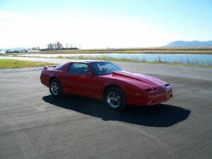 Trans Am: Muscle Car