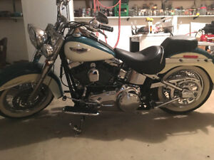 2009 HD Softail Delux ONLY 1200 kms