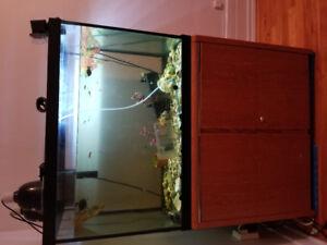 65 gallon Including fish .turtles.all accessories and aquarium s
