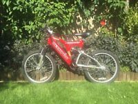 Olympus Twister Junior bike age 7-10