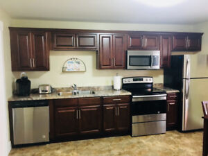 DELUXE FULLY FURNISHED 2 BEDROOM DOWNTOWN APARTMENT