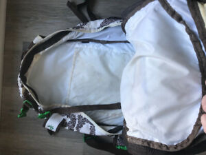 Dakine Backpack- Gently Used