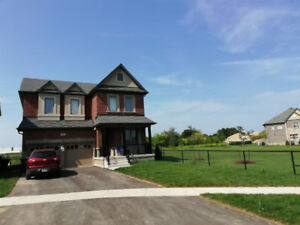 4+1 Bed room detached house at Mississauga Rd and Steels Ave