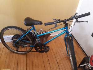 SMALL ADULT BIKE