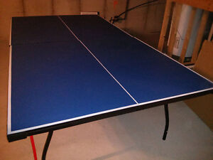 Ping Pong Table / Table Tennis Table for sale