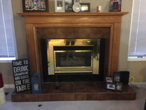 Wood Fireplace with Gas Insert