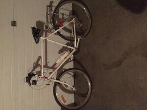 Older Bike $20