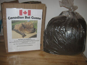 Canadian Bat Guano for Sale