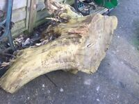 Tree stump - for firewood / carving / garden feature etc