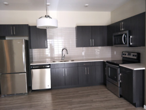 Brand New Townhouse near U of M for rent