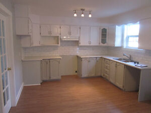 FOR SALE! Renovated Duplex in Center of City Near MUN! St. John's Newfoundland image 3
