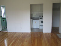 1 1/2 apartment for rent, Newly Renovated, Available 1-st August