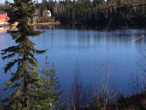 CHALET ! Lac-Saint-Jean Saguenay-Lac-Saint-Jean image 10