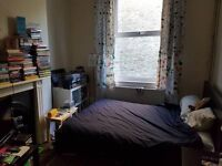Fantastic double room available in spacious flat near Highbury and Islington station