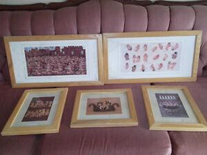 Anne Geddes Pictures
