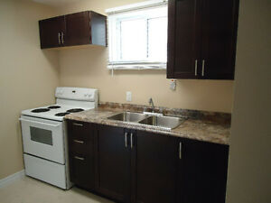 Students - Check out this modern, well appointed 1 bedroom apt.