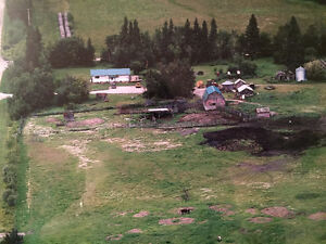 Farm Land with house, barn, outbuildings and 2 wells