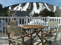 Chalet de ski à louer à Val d'Irène