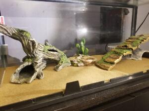 Full Leopard Gecko Terrarium Setup
