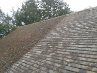 Roof De-Mossing, Siding and soffit cleaning.