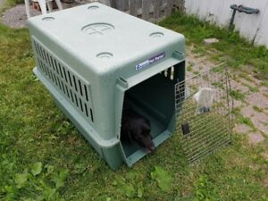 Extra large portable kennel / dog crate