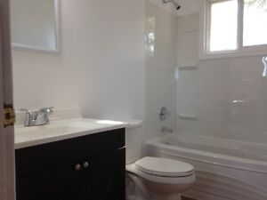 Whole house for rent (East College Park)