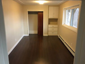BACHELOR Apartment for Rent London Ontario image 4