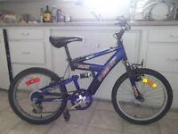 a Blue Bike for Kids