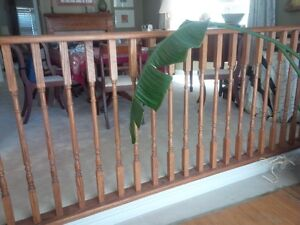 Oak railing with 29 balusters/spindles