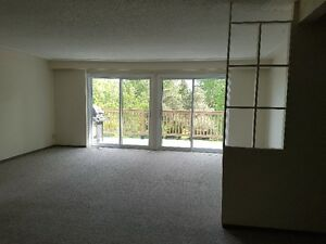 Large 3BR Current River apt in smokefree bldg utilities included