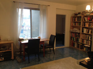 $750 / 1br - Lower Plateau 15 May to 31 July -St. Laurent/Duluth