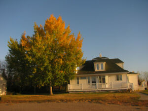 Alberta 640 acre farm for sale