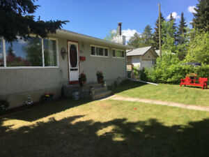 Huge lot great family bungalow for under $350,000 in St.Albert