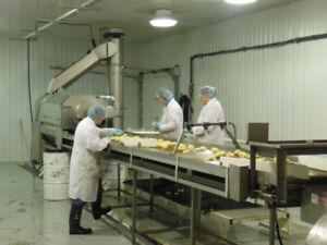 Raw Potato Production line