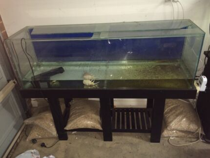 4ft fish tank with stand Klemzig Port Adelaide Area Preview