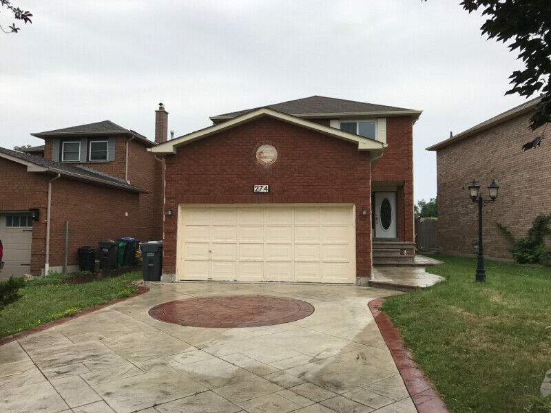 Legal Basement Apartment in Mississauga | Long Term ...