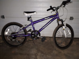 Nakamura Girl Bicycle 20""
