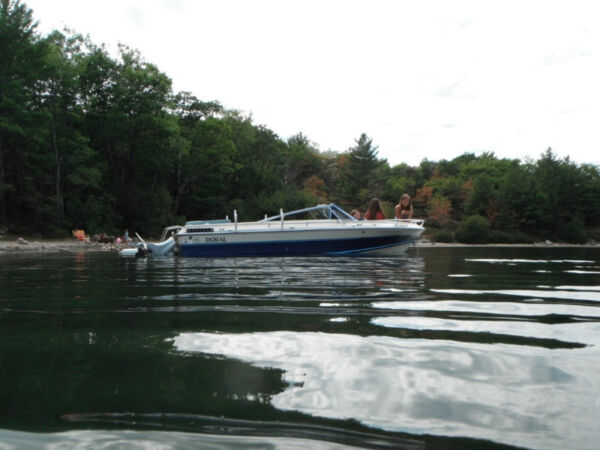 Used 1985 Doral Boats TRX 16