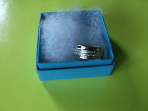 Fidget Ring or Spin Ring