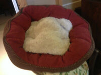 Snoozy Dog Bed