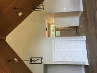 Offordable High End Painting and construction