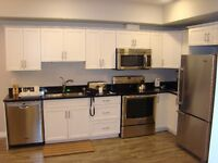 Luxury fully furnished new one bedroom condo(Willowgrove) $700/W