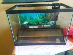 20g Tank for sale