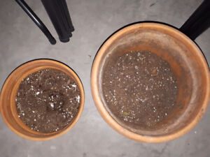 Set of two clay pots with trays