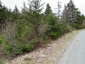 INCREDIBLE PRICE...61 SILVER SPRINGS RD., CON. HR., 1 ACRE. St. John's Newfoundland image 2