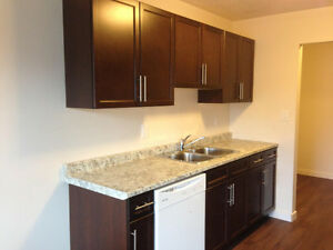 10426 84 ave - HUGE RENOVATED 2 BDR - Free Rent & POWER