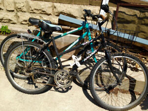 Retro Bikes (both in working condition)