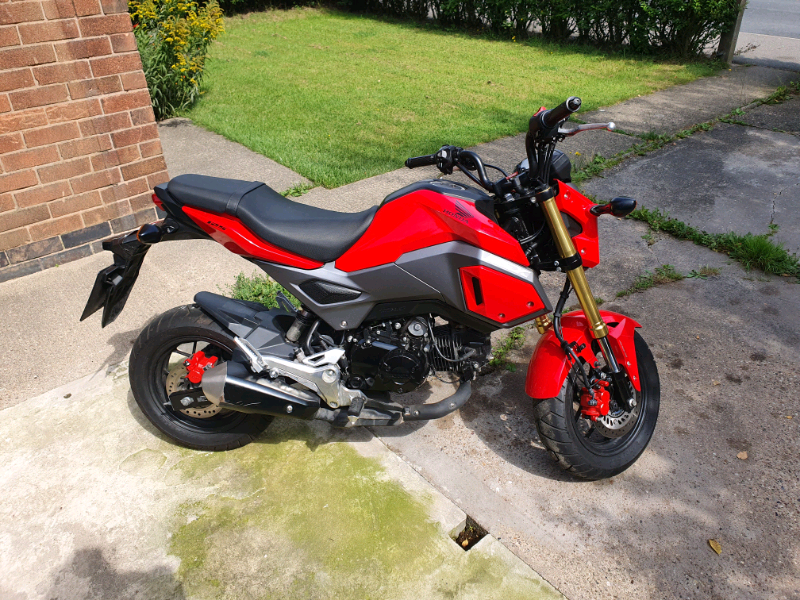 Honda grom | in Wollaton, Nottinghamshire | Gumtree