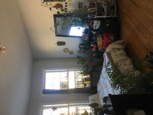 Room Sublet Near Dal,Quinpool and Spring Garden