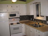 one bedroom main floor of house bowmanville